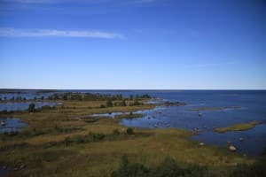 5 tips för en bra semester i Vasa