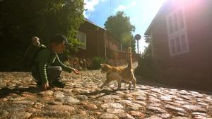 Att göra i Borgå – 5 tips