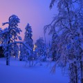 Ruka, kuusom, finland
