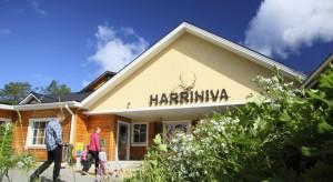 Harriniva Cottages